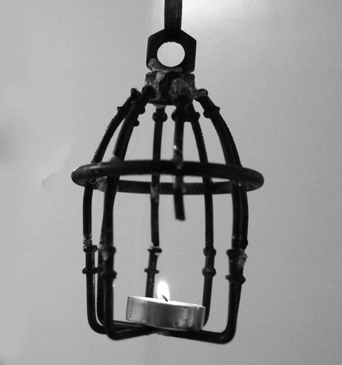 bw_birdcage